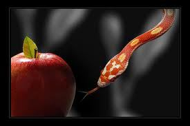 Serpent and the apple